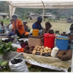 Agric Dept exposing raw food tubers